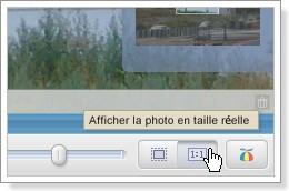 Picasa : Bouton zoom rapide en taille réelle